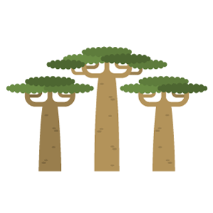 Baobab Free PNG Illustration