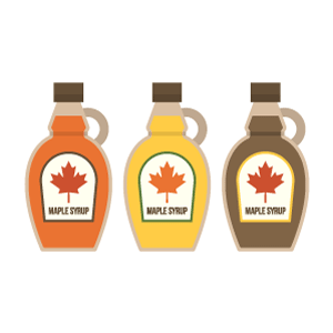 Maple syrup Free Vector Illustration