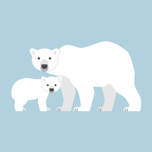 Polar bear Free PNG Illustration