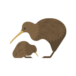 Kiwi Free PNG Illustration