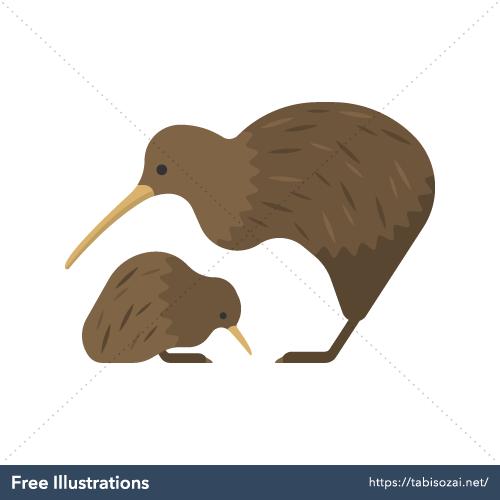 Kiwi Free Illustration